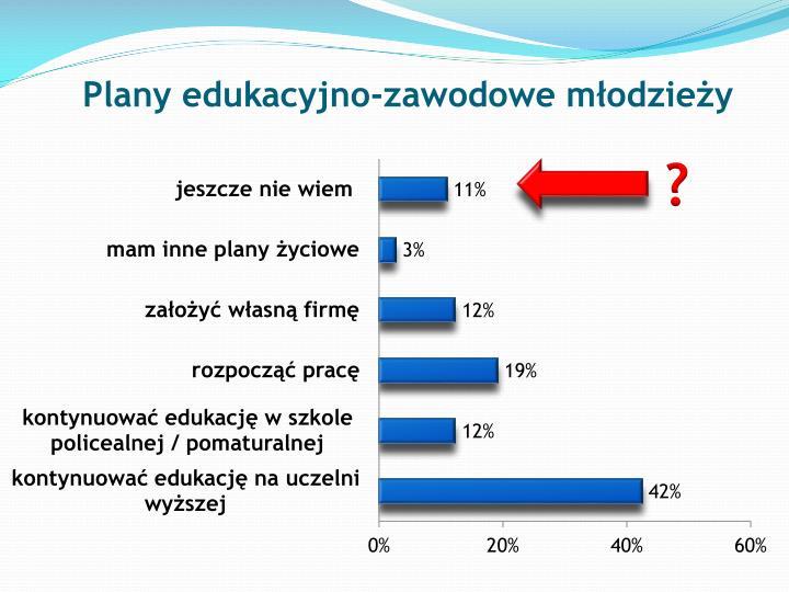 Plany edukacyjno-zawodowe młodzieży