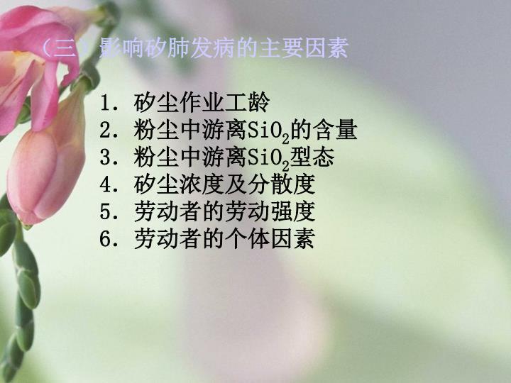 (三)影响矽肺发病的主要因素