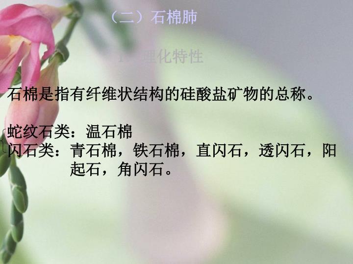 (二)石棉肺