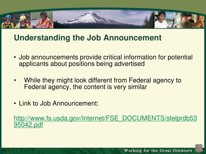 Understanding the Job Announcement