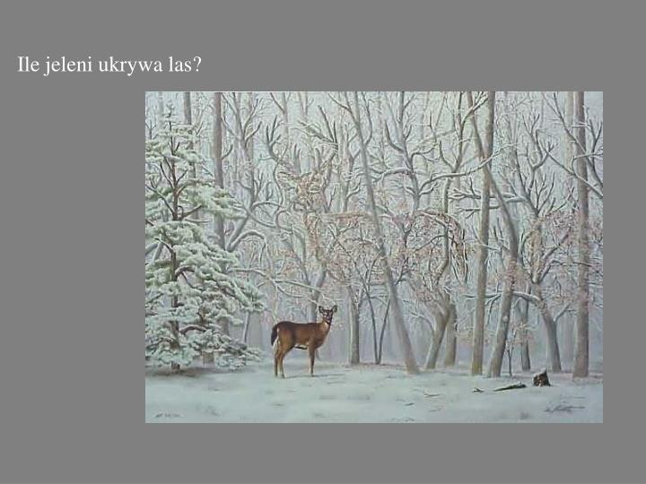 Ile jeleni ukrywa las?