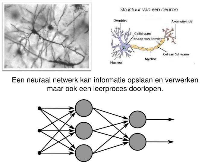 Een neuraal netwerk kan informatie opslaan en verwerken maar ook een leerproces doorlopen.