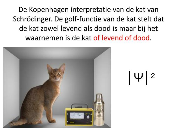 De Kopenhagen interpretatie van de kat van Schrödinger. De golf-functie van de kat stelt dat de kat zowel levend als dood is maar bij het waarnemen is de kat