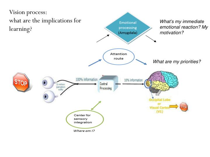 Vision process: