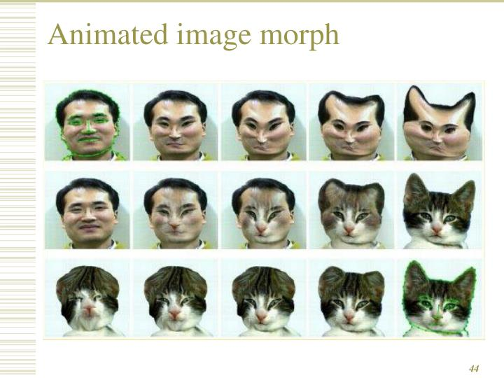 Animated image morph