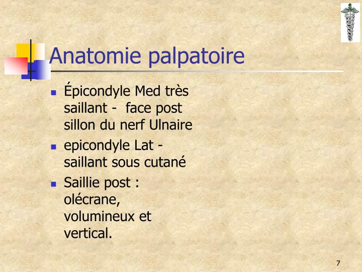 Épicondyle Med très saillant -  face post sillon du nerf Ulnaire