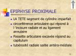 epiphyse proximale