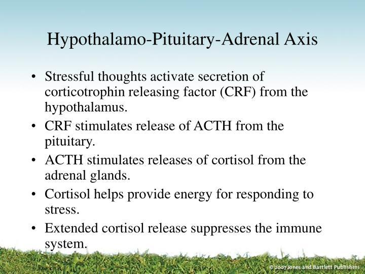 Hypothalamo-Pituitary-Adrenal Axis