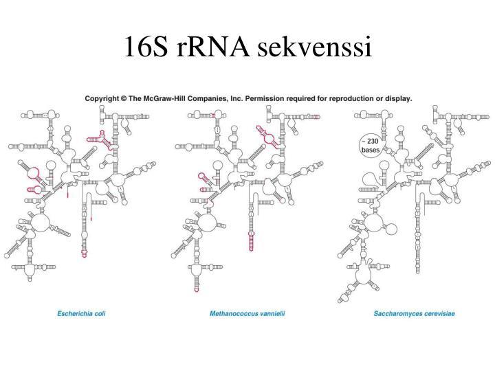 16S rRNA sekvenssi