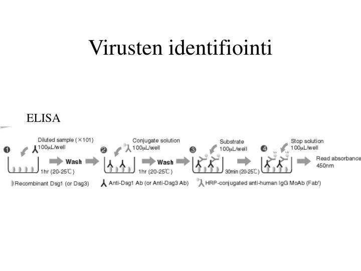 Virusten identifiointi