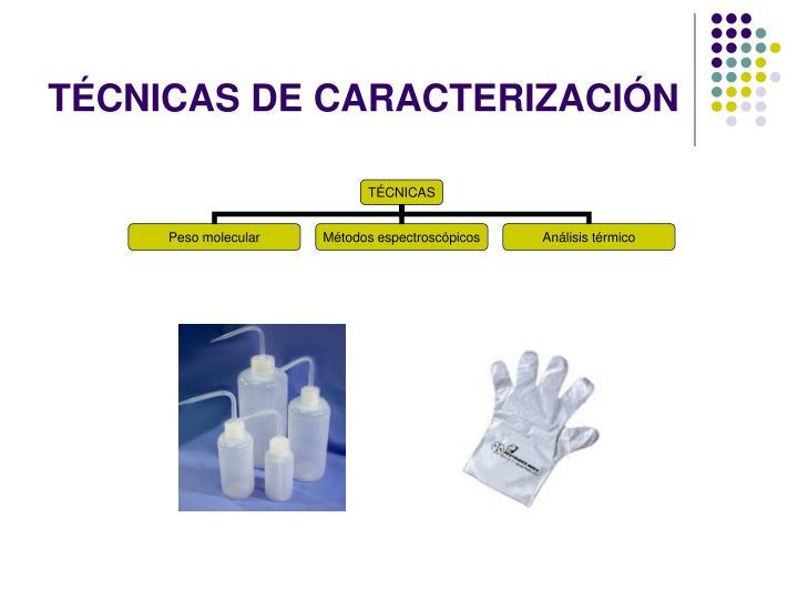 TÉCNICAS DE CARACTERIZACIÓN