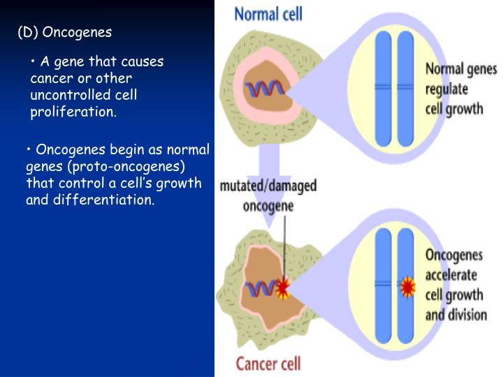 (D) Oncogenes