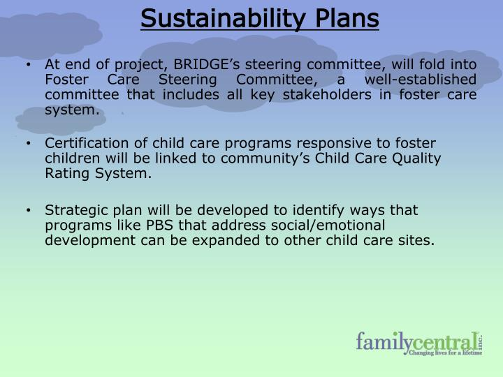 At end of project, BRIDGE's steering committee, will fold into Foster Care Steering Committee, a well-established committee that includes all key stakeholders in foster care system.