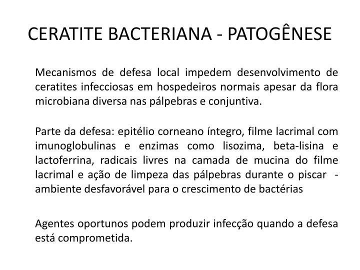 CERATITE BACTERIANA - PATOGÊNESE