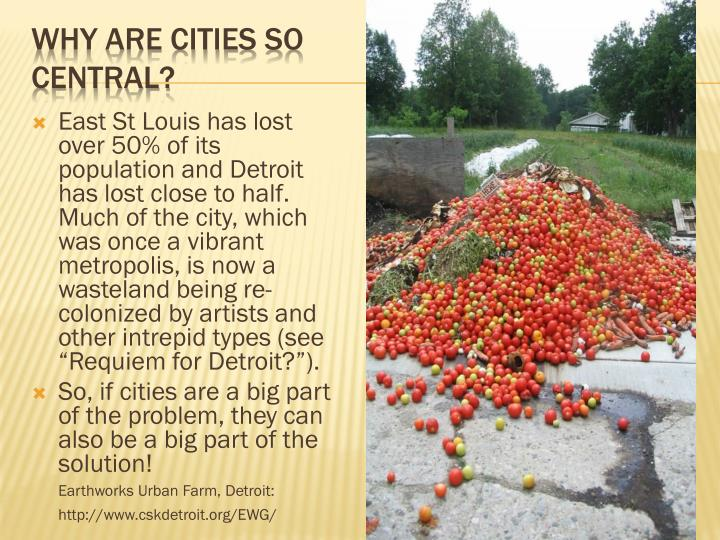 "East St Louis has lost over 50% of its population and Detroit has lost close to half. Much of the city, which was once a vibrant metropolis, is now a wasteland being re-colonized by artists and other intrepid types (see ""Requiem for Detroit?"")."