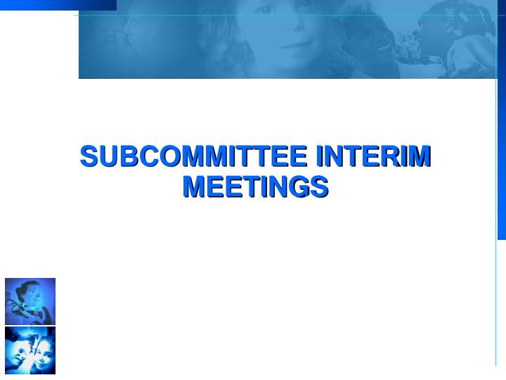 Subcommittee Interim Meetings