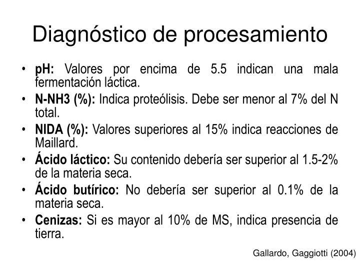Diagnóstico de procesamiento