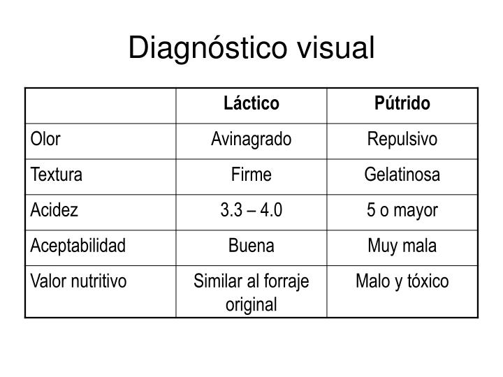 Diagnóstico visual