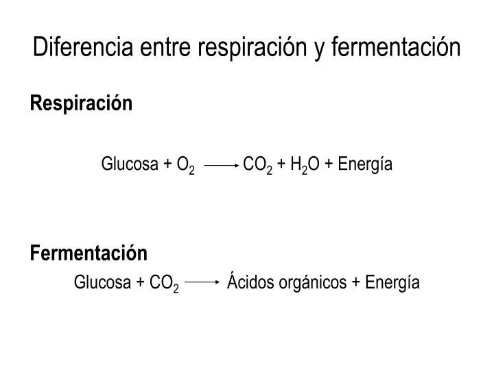 Diferencia entre respiración y fermentación