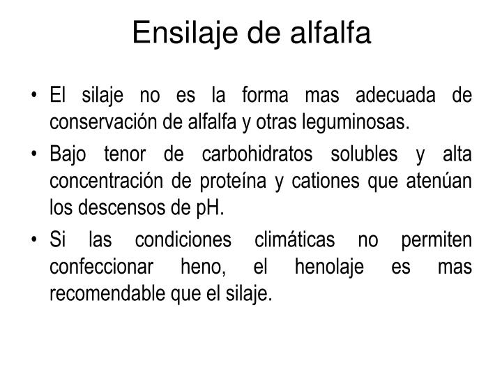 Ensilaje de alfalfa