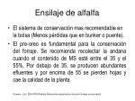ensilaje de alfalfa1