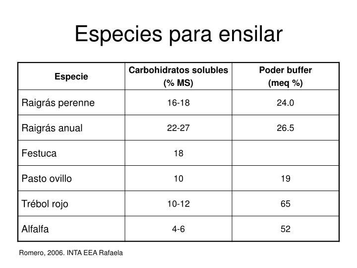 Especies para ensilar
