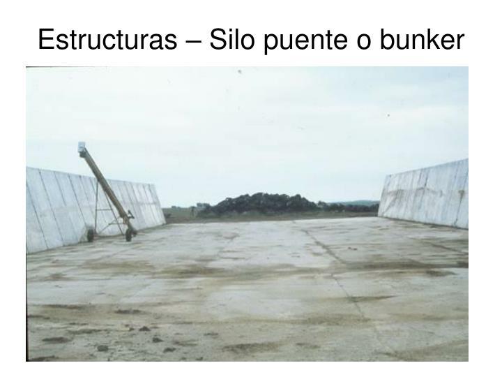 Estructuras – Silo puente o bunker