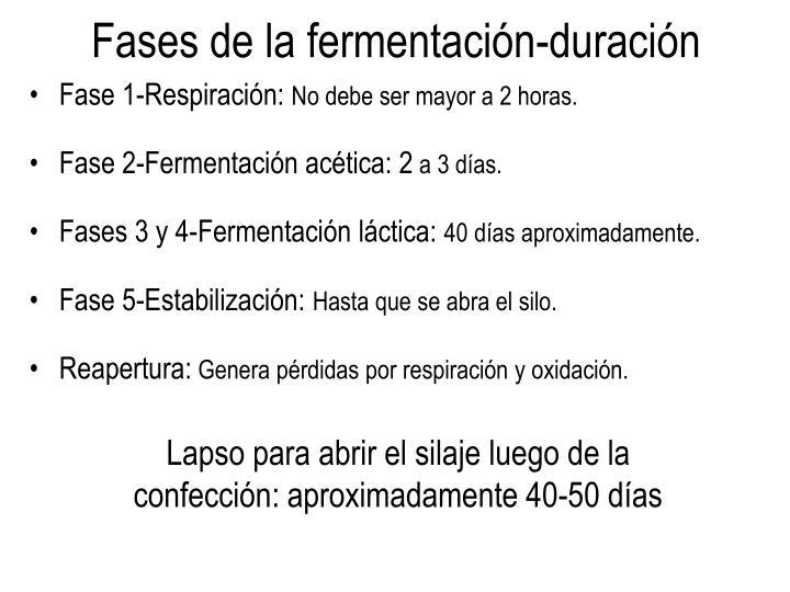 Fases de la fermentación-duración