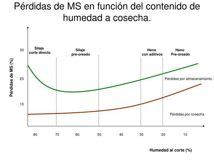 Pérdidas de MS en función del contenido de humedad a cosecha.