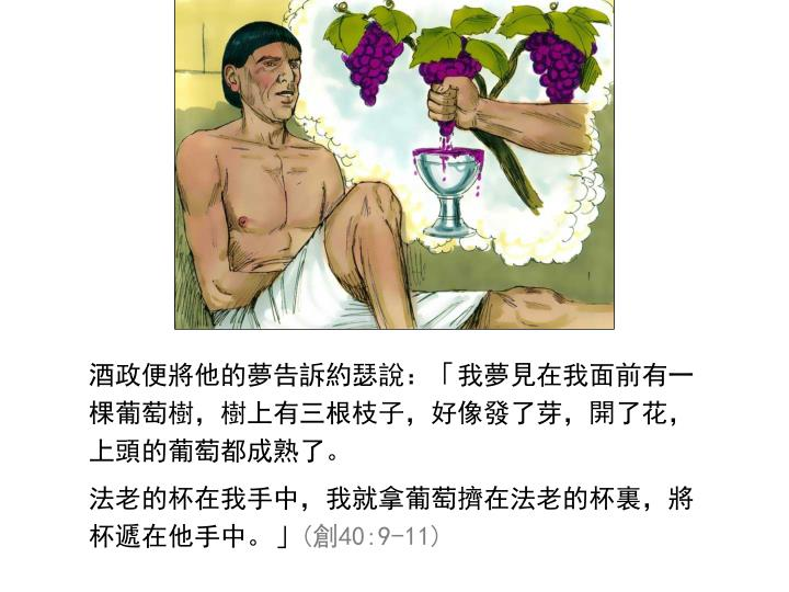酒政便將他的夢告訴約瑟說:「我夢見在我面前有一棵葡萄樹,樹上有三根枝子,好像發了芽,開了花,上頭的葡萄都成熟了。