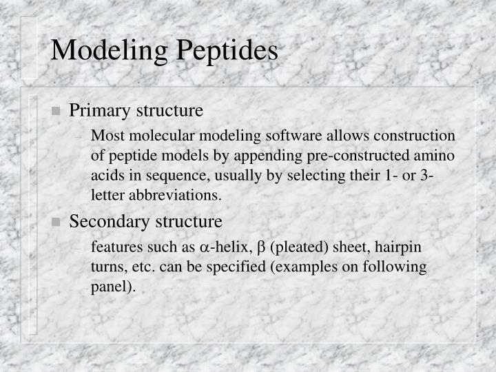 Modeling Peptides