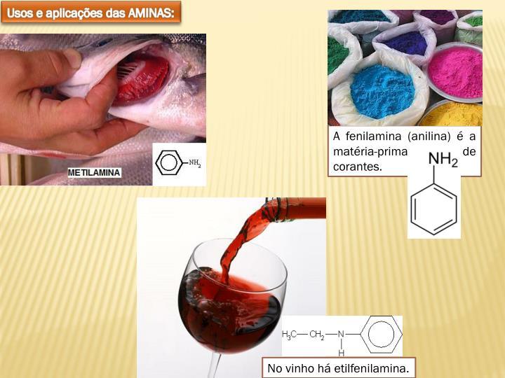 Usos e aplicações das AMINAS: