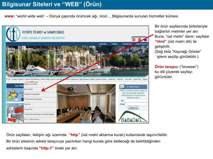 """Bilgisunar Siteleri ve """"WEB"""" (Örün)"""