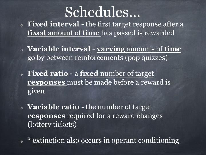 Schedules...