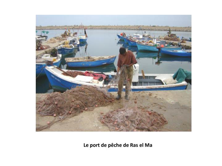 Le port de pêche de Ras el Ma