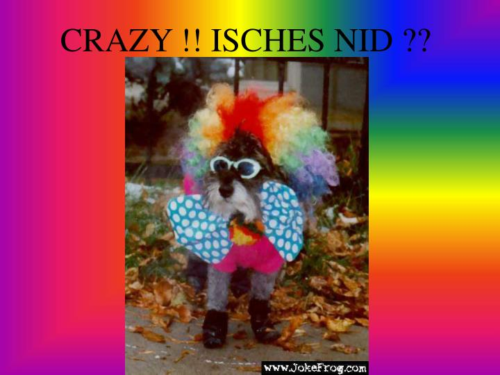 CRAZY !! ISCHES NID ??
