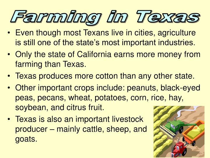 Farming in Texas