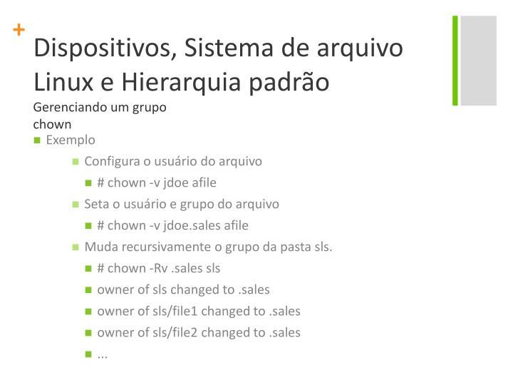 Dispositivos, Sistema de arquivo Linux e Hierarquia padrão