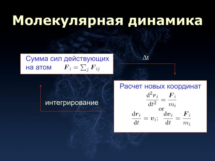 Молекулярная динамика