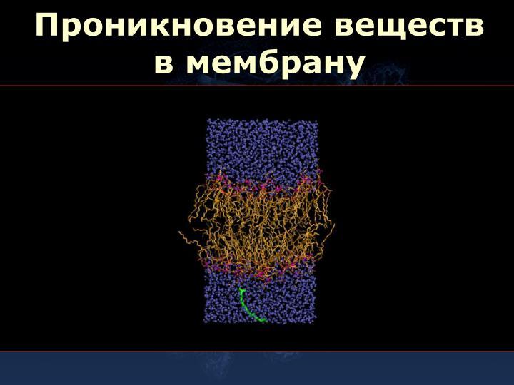 Проникновение веществ в мембрану