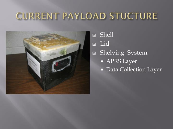 CURRENT PAYLOAD STUCTURE