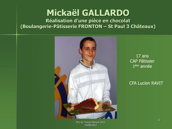 Mickaël GALLARDO