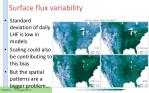 surface flux variability2