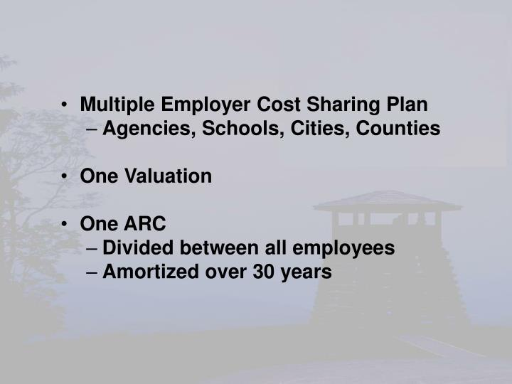 Multiple Employer Cost Sharing Plan