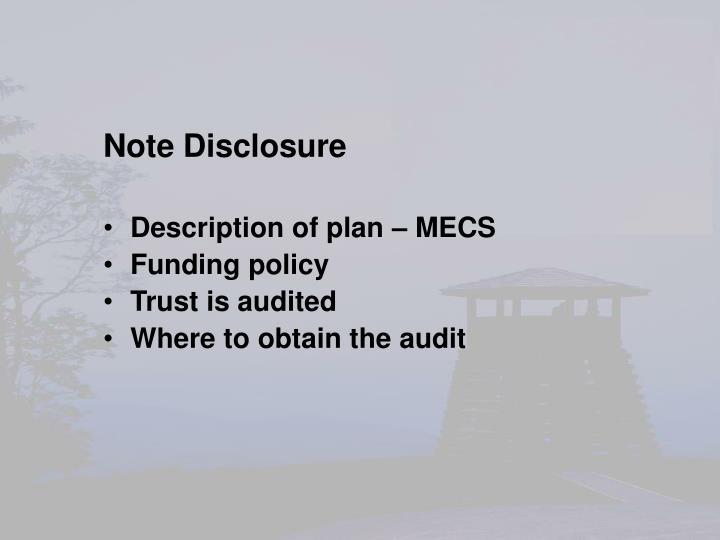 Note Disclosure