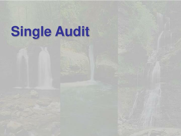 Single Audit