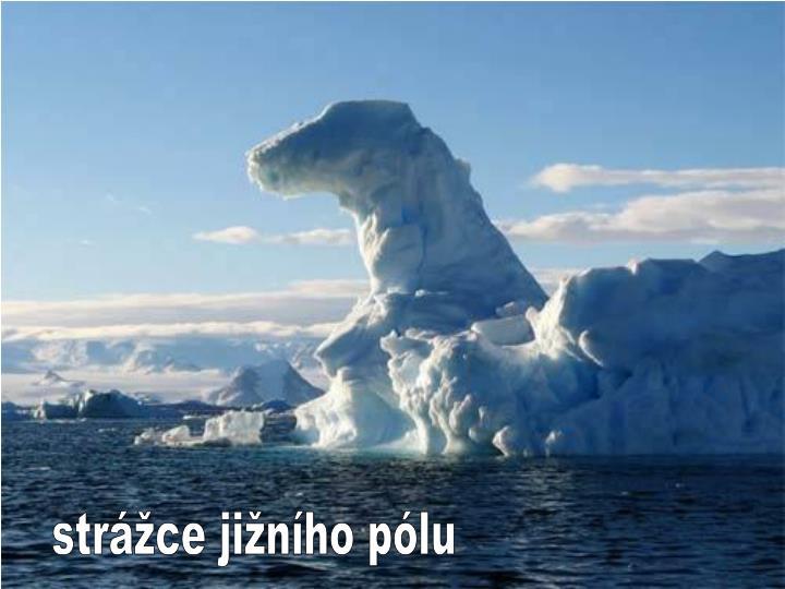 strážce jižního pólu