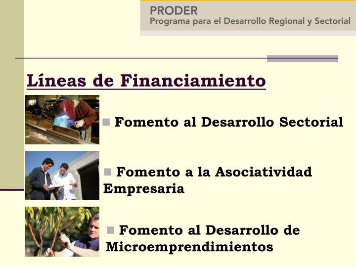 Fomento al Desarrollo Sectorial