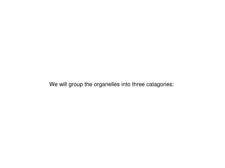 We will group the organelles into three catagories: