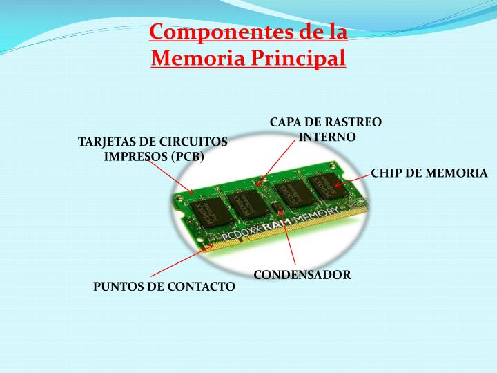 Componentes de la